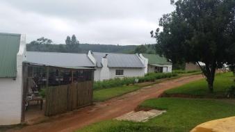 Tour our Africa Silks farm