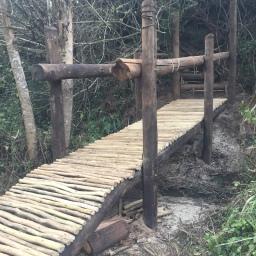 hiking-trail-2