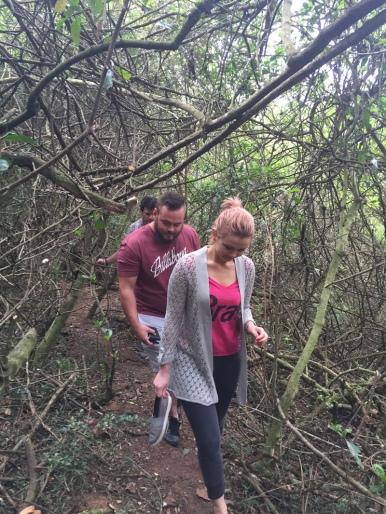 hiking-trail-3