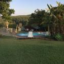 pool-garden-4